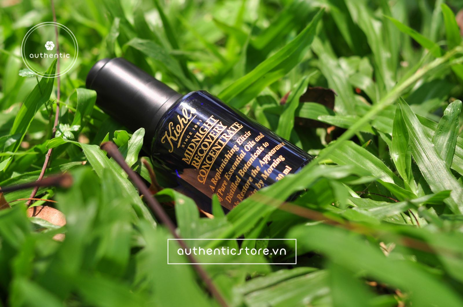 Serum dưỡng da Kiehl's Midnight Recovery Concentrate